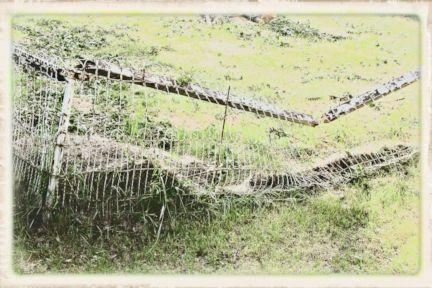 055 Fencing