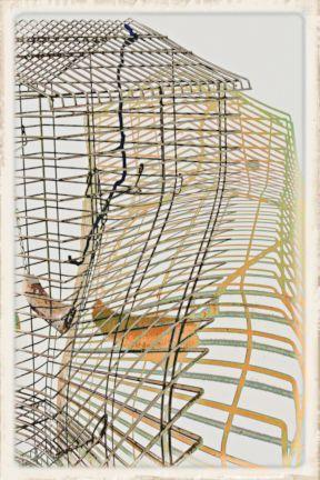 086 caged3